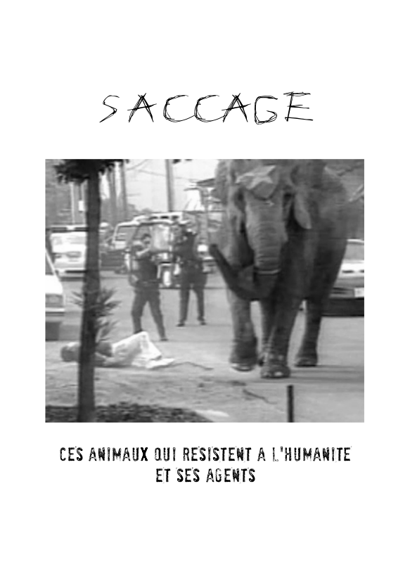 Saccage_front2